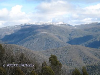 Mt Gingera