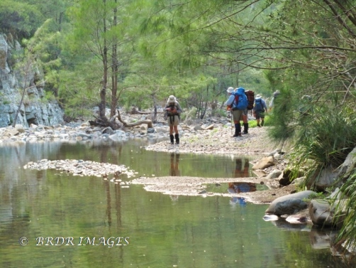 Walking down Ettrema Creek